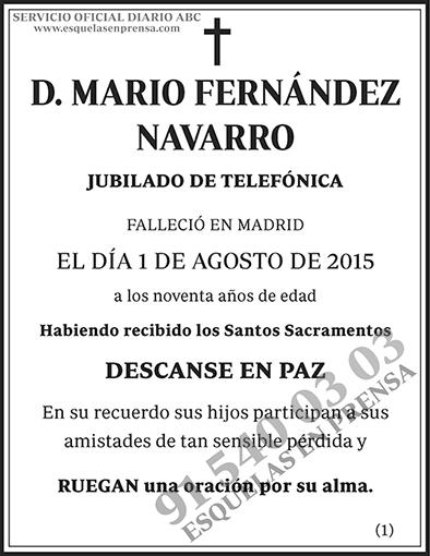 Mario Fernández Navarro
